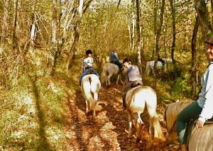 les-constancies-horseriding